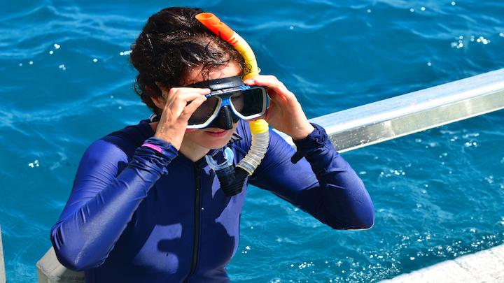Bareboating in the Whitsundays stinger season